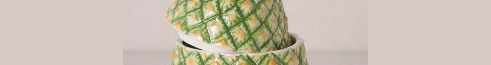 Mise en avant matière Ananas en céramique Troubat