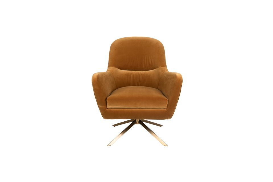 Fauteuil Robusto Whisky - 10