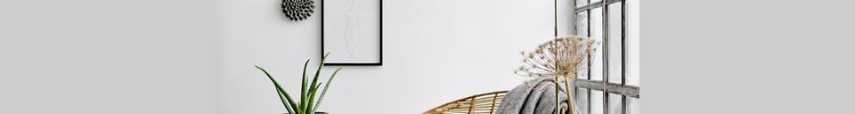 Mise en avant matière Rocking Chair de l'Orénoque