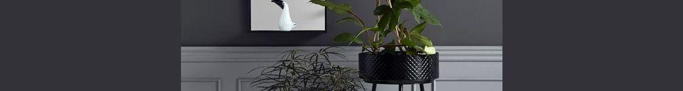 Mise en avant matière Support bas pour plante Indien en métal noir