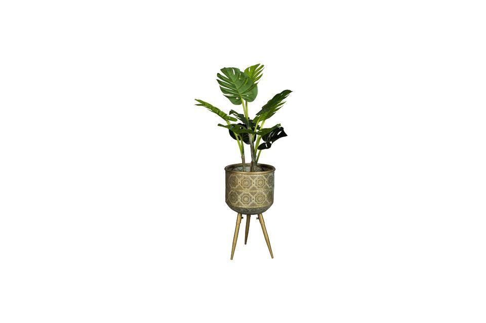 Support Pour Plantes Botanique taille M - 7