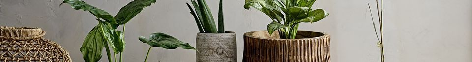 Mise en avant matière Tabouret Cheffes en bois
